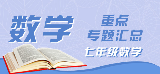 七年级数学重点专题汇总(8月)