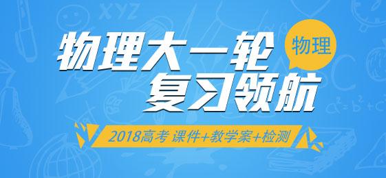 2018高考物理大一轮复习领航(课件+教学案+检测)