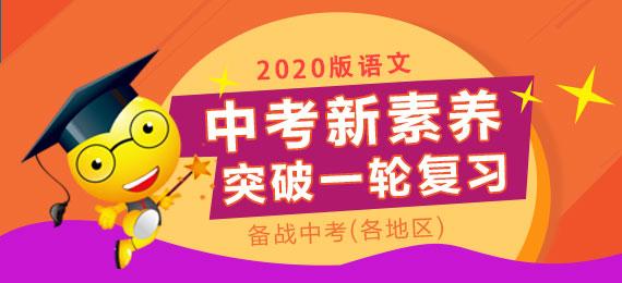 2020版语文中考新素养突破一轮复习(各地区)