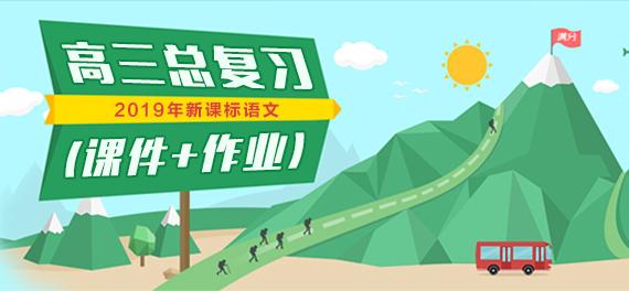 2019年新课标语文高三总复习(课件+作业)