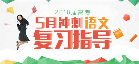 2018届高考语文5月冲刺复习指导