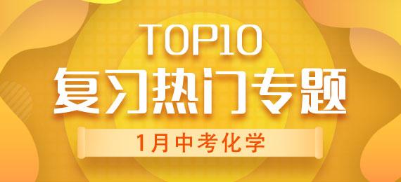 1月中考化学复习热门专题TOP10
