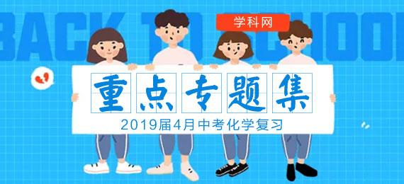 2019中考化学复习重点专题汇总-4月