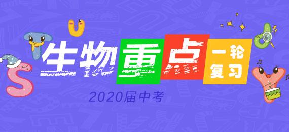 2020年中考生物(全国)总复习(课件 练习)