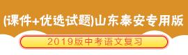 2019版中考语文复习(课件+优选试题)山东泰安专用版