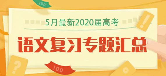 5月最新2020届高考语文复习专题汇总