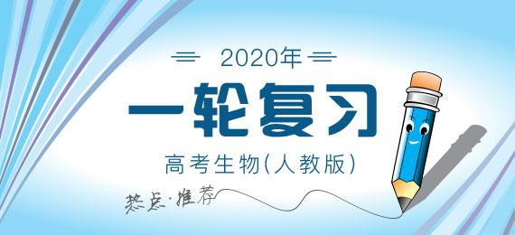 2020年高考生物(人教版)一轮复习