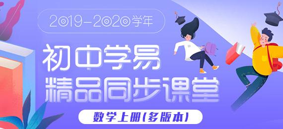 2019-2020学年初中数学上册同步精品课堂(多版本)