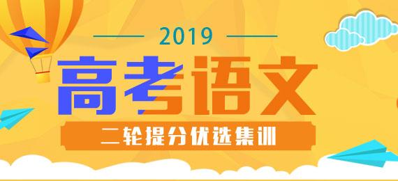 2019高考语文提分二轮(课件+讲义+优选集训)
