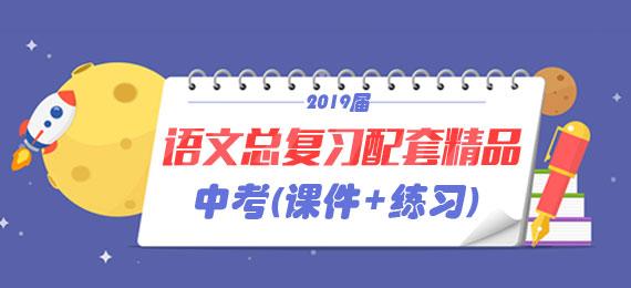 2019届中考语文总复习配套精品(课件+练习)