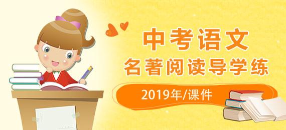 2019年中考语文名著阅读导学练课件