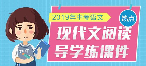 2019年中考语文现代文阅读导学练课件