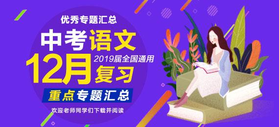 2019届中考语文一轮复习月度重点专题集-12月
